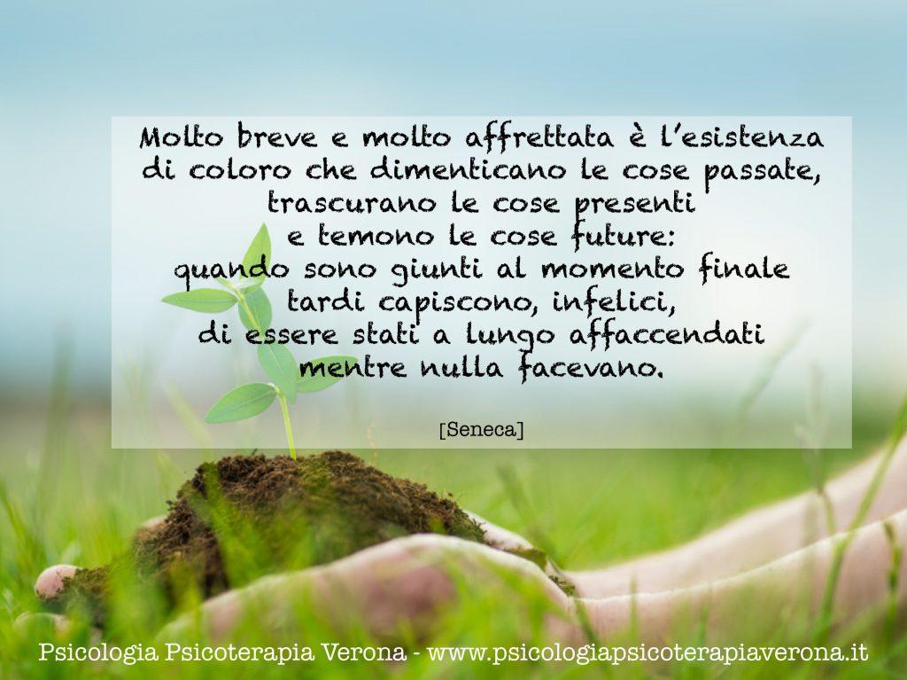 cit 161110 Seneca
